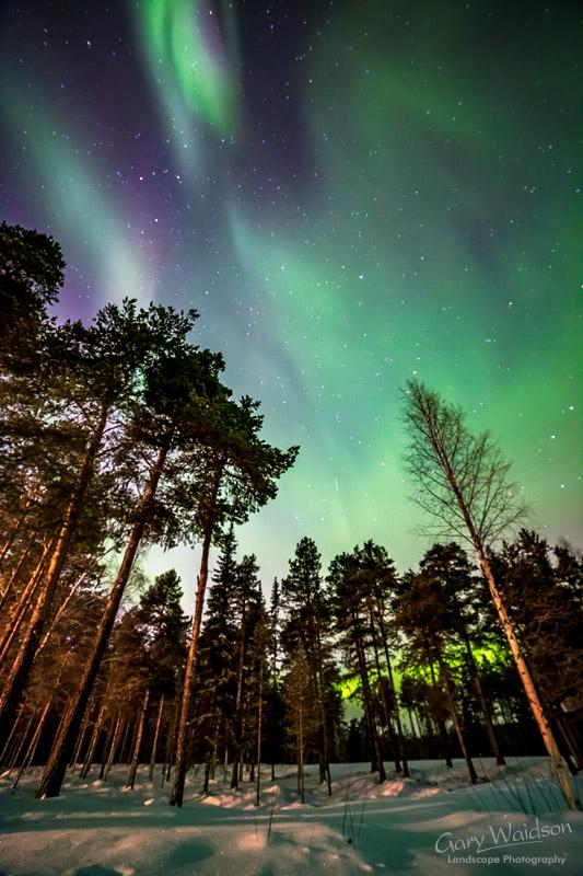Jokkmokk-Aurora-Two.jpg